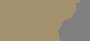 trendystyl logo